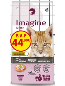 IMAGINE CAT KITTEN 8 Kg.